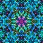 """Coral Stream Mandala"" by richardhjones"