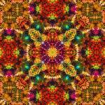 """Coral Starburst Mandala"" by richardhjones"