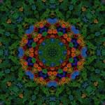 """Gethsemine Dusk Mandala"" by richardhjones"