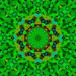 """Gethsemine Forest Mandala"" by richardhjones"