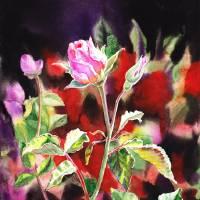 Pink Rose In The Garden Realistic Artwork Art Prints & Posters by Irina Sztukowski