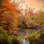"""""""Autumn Reflections"""" by JessicaJenney"""