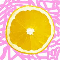 Citrus Series - Orange