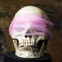 Human Skull with Scarf