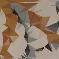 Cornsilk Brown Abstract Low Polygon Background