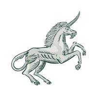 Unicorn Horse Prancing Side Etching