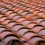 """Boise Depot roof tiles"" by LorettaPrencipe"