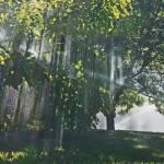 """Lawn Art"" by ralphnelsen"