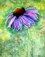 Cone Flower Painting 8-6-15