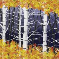 Birch trees fall 1