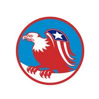 American Eagle Flag On Wing Perching Circle Retro