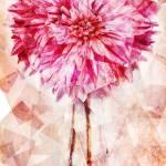 """purple dahlia"" by ScovoPhoto"