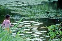 Boy in Pink, Trying To Fish