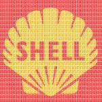"""shell"" by garyhogben"