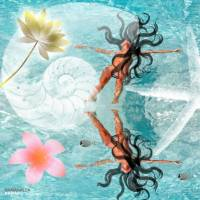 Dream Float Hawai'i Art Prints & Posters by Laura Isola