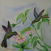 Hummingbirds_002