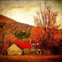 Autumn Fragrance Art Prints & Posters by Pamela Phelps