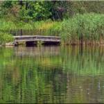 """""""031  Reflections at the park"""" by micspics444"""
