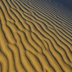"""Descending Dune Abstract"" by stillwildphotography"