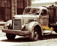 Vintage Truck and Flower Box Color Splash