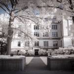 """State Historical Society of Missouri Infrared"" by notleyhawkins"
