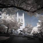 """Memorial Union Infrared"" by notleyhawkins"