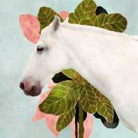 """White Horse"" by cozamia"