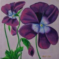 Purple_Pansies