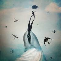 Jump! Art Prints & Posters by Catrin Welz-Stein