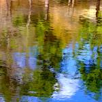 """Petersham Summer Reflections"" by bavosiphotoart"