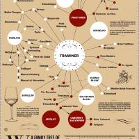 Family Tree of Wines Art Prints & Posters by Lee Willett