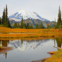 """Beauty Of Autumn  Mount Rainier National Park"" by Photography Moments"