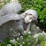 """""""Garden angel in repose"""" by Anewsgal"""