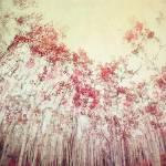 """The Red Forest"" by Piri"