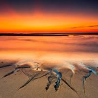 Cape Cod National Seashore The Ocean Art Prints & Posters by Dapixara Art