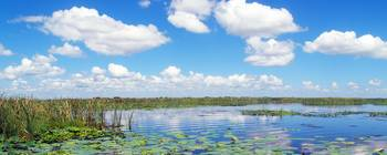 Skyscape Reflections Blue Cypress Marsh Florida C4