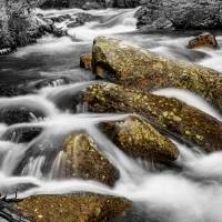 Cascading Water and Rocky Mountain Rocks BWSC Art Prints & Posters by James