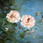 """""""White Rose"""" by lindacarroll"""
