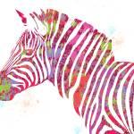 """""""Zebra #2 - Pop Art"""" by wcsmack"""