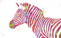 Zebra #2 - Pop Art