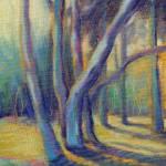 """""""""""Sunlit Eucalyptus"""" Konnie Kim 530402"""" by KonnieKim"""