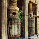 """Vintage Wine Press"" by jameseddy"
