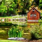 """""""Little House By a Pond"""" by almarphotography"""