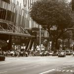 """Street of Singapore in  Monochrome, Orchard Road"" by sghomedeco"