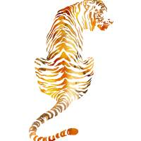 tiger 3 Art Prints & Posters by David Rogers