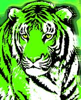TIGER-3 (LARGE) GREEN