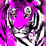 """TIGER-3 (LARGE) PURPLE"" by thegriffinpassant"