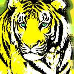 """TIGER-3 (LARGE) YELLOW"" by thegriffinpassant"