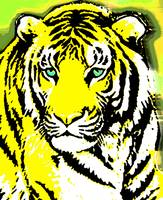 TIGER-3 (LARGE) YELLOW