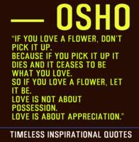 Timeless Inspirational Quotes - OSHO